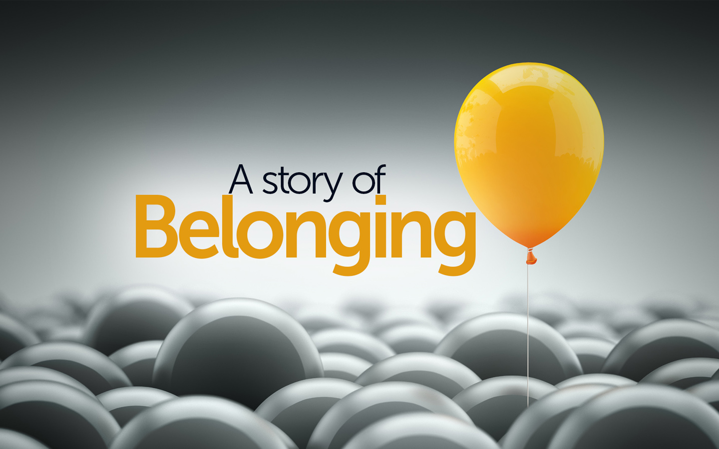 Bulletins - A story of belonging