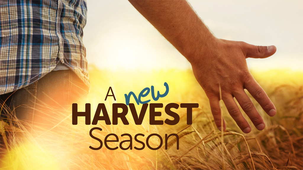 Bulletins - A new harvest season